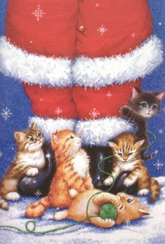 Santa and Kittens . . .so cute!