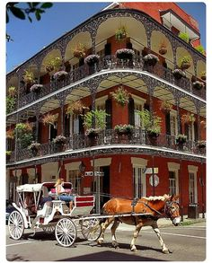 Wishing a happy birthday to my favorite city #neworleans founded May 7 1718! #vacationgoals #travelislife #bontemps #frenchquarter #nola #vieuxcarre #traveladdict #mardigras #essencefest #stcharlesstreetcar #gardendistrict #tulane #loyola #xavieruniversity #emeril #commanderspalace #mullates #bourbonstreet by uptown_coffy_brown