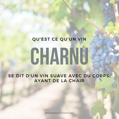 Vocabulaire vin Grand Cru, Wine O Clock, Champagne, Restaurant, Drinks, Words, Wine Tasting, France, Food Items