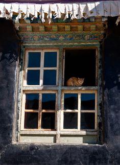 Window, Tibetan monastery