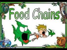 Food Chains ,Food Webs,Energy Pyramid in Ecosystems-Video for Kids - YouTube Informational, not as fun as Bill Nye, but quicker.