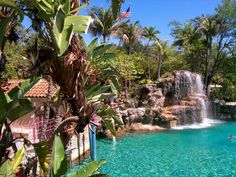 1000 Images About Coral Gables Venetian Pool On