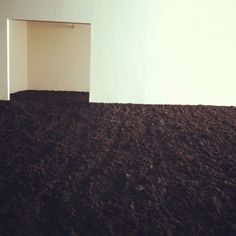 The Earth Room ~ Walter De Maria's 1977 art installation, a single room filled with 280,000 pounds of dirt, combines the framework of an ordinary office with the scent of a wet forest. http://www.lonelyplanet.com/usa/new-york-city/sights/museums-galleries/new-york-earth-room