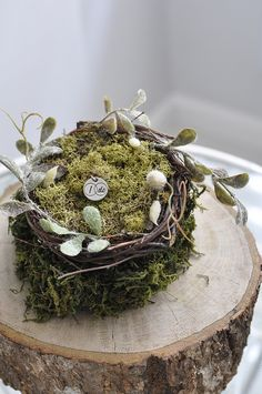 nests to make
