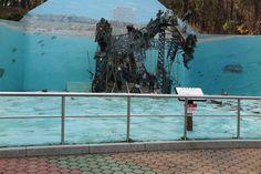거제도 포로수용소 유적공원 대동강 철교
