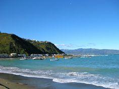 Island Bay, Wellington    From: http://www.dangerous-business.com