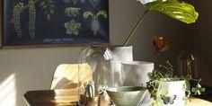 """NATURLIG: Ranke, som er utdannet kjemiingeniør og prosjektleder, er opptatt av natur og vitenskap. Plansjene som pryder flere av veggene i funkisvillaen er derfor valgt med omhu. Disse er fra en tidligere """"limited edition-kolleksjon"""" hos Ikea. Kobberlampene er kjøpt via Blomquists nettauksjon. Vaser og skåler er fra ShiShi, marmorplate i italiensk carrarra."""
