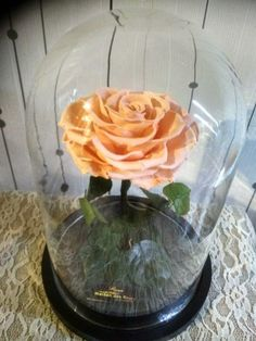 Forever Rose, Glass Vase, Table Decorations, Home Decor, Decoration Home, Room Decor, Home Interior Design, Dinner Table Decorations, Home Decoration