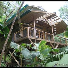 Finca Bellavista: Incredible Tree House Community in Costa Rica Costa Rica, Treehouse Living, Treehouse Ideas, Cool Tree Houses, Tiny Houses, Wood Shop Projects, Tropical Architecture, Tiny Spaces, Open Spaces