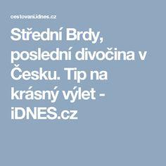 Střední Brdy, poslední divočina v Česku. Tip na krásný výlet - iDNES.cz