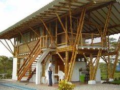 La Guadua tiene una larga historia de uso para diversos fines, tales como alimentación, vivienda, muebles,etc. El bambú Guadua ha estado sirviendo a la huma