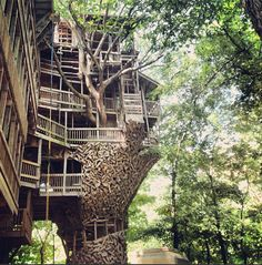 who wouldn't want to live in a treehouse!