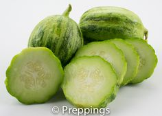 Apple Cucumber / Crystal Lemon Cucumber / Crystal Apple Cucumber :: Search by flavors, find similar varieties and discover new uses for ingredients @ preppings.com