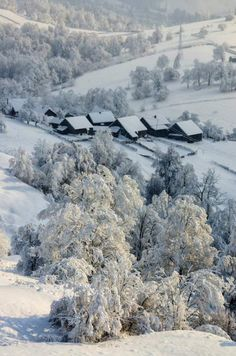 Plesa, Suceava, Romania (by Olari Ionut Photograhy) Regions Of Europe, Snow Scenes, Czech Republic, Homeland, Hungary, Croatia, Winter Wonderland, Places To Visit, Around The Worlds