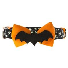 Thrills & Chills™Pet Halloween Bat Dog Collar | Collars | PetSmart