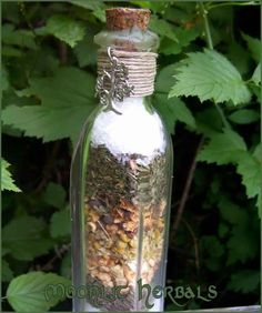 Home Protection Spell Bottle    Find an apothecary bottle or jar that has a lid (an empty candle jar with a cork lid or a canning jar will suffice) and add to it the following botanicals while visualizing your home bathed in a warm protecting energy:        1/4 to 1 cup salt      1 clove garlic      3 bay leaves      7 tsp. dried basil      4 tsp. dill seeds      1 tsp. sage      1 tsp. anise      1 tsp. black pepper      1 tsp. fennel      Mix the ingredients well and then seal the jar with...