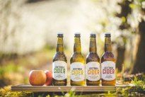 Loxtonia Cider's Orchard to Bottle philosophy is their guiding principle, with special care being taken in the orchard to grow and nurture each of their apple varieties, a journey that begins in the soil and ends with cider. Apple Varieties, African Crafts, Craft Beer, Brewery, Beer Bottle, South Africa, Philosophy, Journey, Beer Bottles