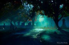 Cemetery von Mary Ann Reilly