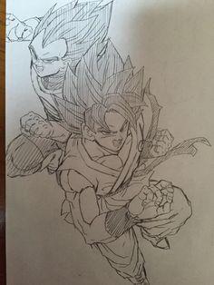 Vegeta & Goku SSB