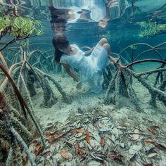 歩くより先に泳ぐことを覚えた少女サシャ・カリス(Sacha Kalis)。美しさと泳ぎの巧さから、「人魚」と呼ばれています。