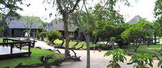 Nkorho Bush Lodge - A Luxury Safari Lodge in the Sabi Sands