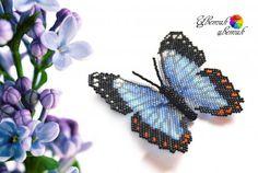 Урок 22 - Бабочка Морфо Эгей | biser.info - всё о бисере и бисерном творчестве