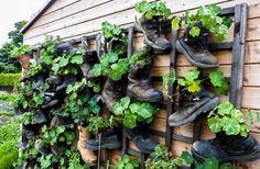 10 ideias sustentáveis que deram certo - Incrível Natureza