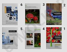 "Check out new work on my @Behance portfolio: ""Zoo Photography a4 Brochure Template"" http://be.net/gallery/64631605/Zoo-Photography-a4-Brochure-Template"