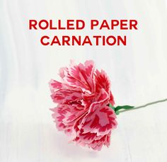 Rolled Paper Carnation Tutorial – Free SVG Files via @jenuinemom