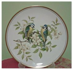 Spode collectable fine bone china Garden Bird plate. £12.00, via Etsy HomeofVintage