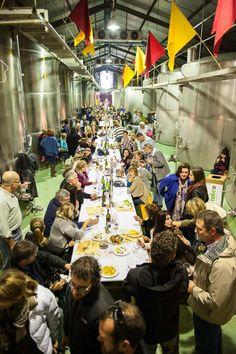 Wacky Wine Weekend Wine Festival Robertson | 4-7 June 2015 Wine Festival, Cape Town, June, Events