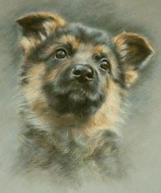 Eight weeks old, Furry friends, Vivien Walters, SAA Professional Members' Galleries