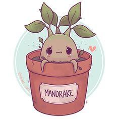Have a little Mandrake! :3 what are some other HP plants I can draw? ✨ • #mandrake #mandrakeroot #harrypotter #harrypotterart #hogwarts #herbology #cute #kawaii #chibi #instaart #instaartist #instadaily #illustration #illustrationoftheday #digitalpainting #digitalart