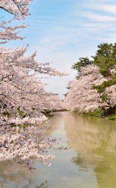 Hirosaki, Aomori, Japan Yuzumi Aoyama