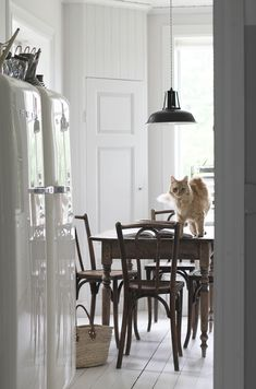 strenghielm_designsponge.kitchen.1