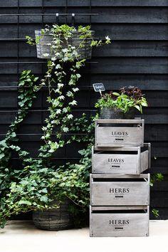 Potager / Vegetable Herb Garden | Labeled wood totes