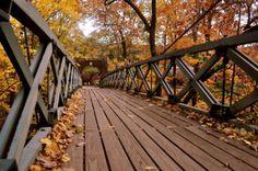 "Rutgers ""Kissing Bridge"" on Cook-Douglass campus"