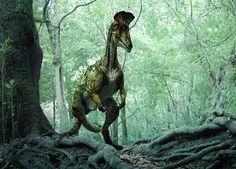 Cryolophosaurus - Dinosaur Revolution - Prehistoric life