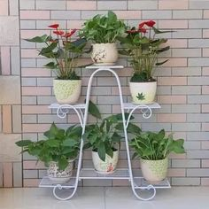 Cheap flower rack, Buy Quality balcony rack directly from China multi rack Suppliers: European style multi storey flower rack green balcony living room flower pots Balcony Flowers, Balcony Plants, House Plants Decor, Plant Decor, Indoor Balcony, Indoor Flower Pots, Indoor Plants, Metal Plant Stand, Container Gardening