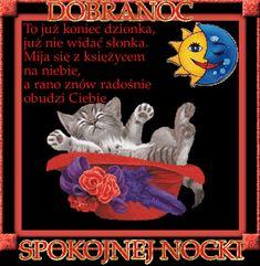 Wierszyki i gify na dobranoc: Gify na dobranoc kotki Good Night, Poster, Dog Love, Animales, Polish, Nighty Night, Good Night Wishes, Billboard