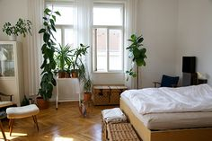 My flat in Vienna (bedroom) ©mraelodie