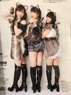 Look at this three kittens, Oda chan <3<3