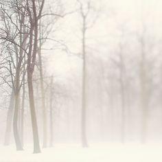 Breathtaking photography By Irene Suchocki