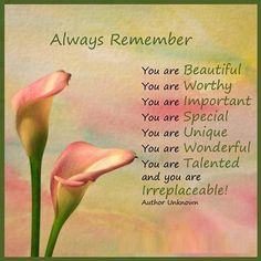 Always Remember... You are beautiful, Worthy, Important, Special, Unique, Wonderful, Talented and you are IRREPLACEABLE!