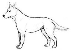 Afbeeldingsresultaat voor hond tekenen