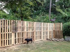 Pallet Fence Ideas Pinterest — Thehrtechnologist : Build Wood Pallet Fence Plans