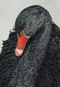 Black swan tattoo design