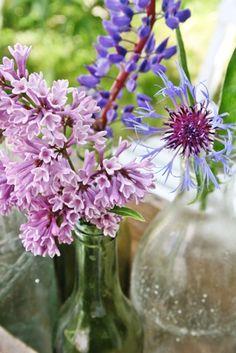 60 razões para viver: Decoração - Flores