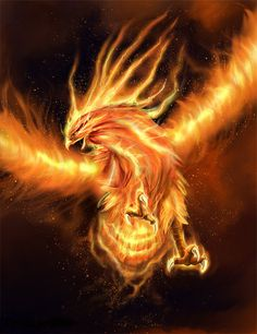 Legend and Mythological Story of the Phoenix.