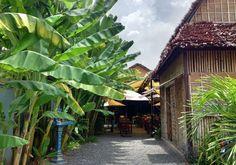 Haven Training Restaurant : Siem Reap, Cambodia